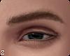 !! Van  Eyebrows III
