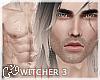 G`W3.Geralt of Rivia' 04