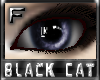 *.:.* BlackCat's Boutique UPDATED New Innocent Skin Set!! (3/18/10) *.:.* - Page 3 Images_dea2fedf7b67222c33c077077511ac8f