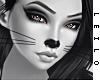 ! L! Kitty Skin II . MMN