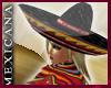 [V4NY] !Mexicana! Nat2