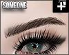 + sleek brows brown