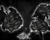 -LEXI- Roses | Black