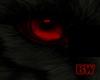 Black Wolf Vamp