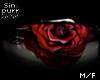 S; Roses Eyes
