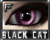 *.:.* BlackCat's Boutique UPDATED New Innocent Skin Set!! (3/18/10) *.:.* - Page 3 Images_f080a9dd1ec787be52e4c6039047b38b