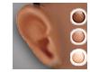 Large Mesh Ear Applier