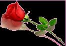 sticker_10235693_26499395