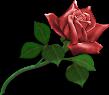 Sticker_14903160_47473772