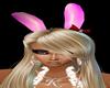 Playboy ears