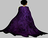 Evil witch purple cape