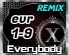 Everybody - Backstreet Boys Remix