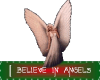 HW: I believe in Angels