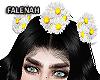 🌼 Margarita Crown