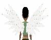 Razzle Dazzle Wings
