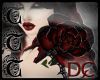 TTT Diamond Rose ~Blk/Rd