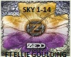 Zedd - Fall Into The Sky