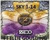 Zedd - Fall Into The Sky