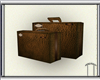 Brown Leather Luggage V2