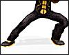 Kungfu Silk Pants BLACK