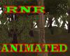 ~RnR~TREESWING PARK LAKE
