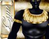 Cym Anubis Top