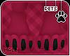 [Pets] Ziro | paws