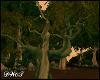 D- Tree Vine