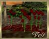 rose animated pentals