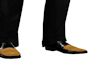 Gold tip shoes