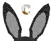 *C* black bunny ears