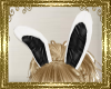 A35 Animated Bunny Ears