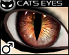  SIN  Cat's Eye - Brown
