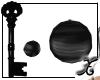 *SX* Black Planets