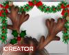 Reindeers Antlers