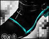 *C V.H.Boots:.