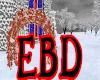 EBD~ Winter Wedding Arch