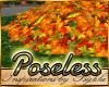 I~Autumn Leaf Pile