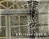 H. Halloween Spider Web