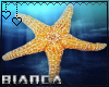 [B.DJ] Sea Star Ocean