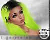 .tM. Lime Cassy