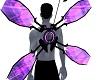 Purple Program Wings