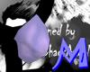 Anyskin Beak Small M