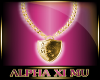 Alpha Xi Mu W Gold Chain