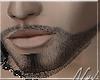 (FG) Half Edge Beard Lv1