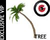 Palm Tree 05
