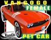 VG pet CAR avi FEMALE