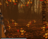!A autumnal garden
