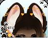 [Pets] Kimi | ears v5