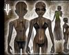 [LyL]Woodling Skin FXB